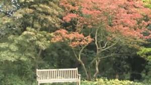 Natuur in de war door warm voorjaar en natte zomer