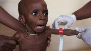 Hongercrisis bedreigt Niger