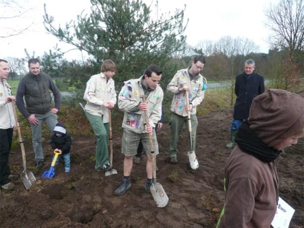 Scouting Hamont plant 250 bomen op nieuw scoutsterrein