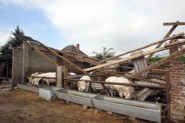 Windhozen treffen Limburg het vaakst