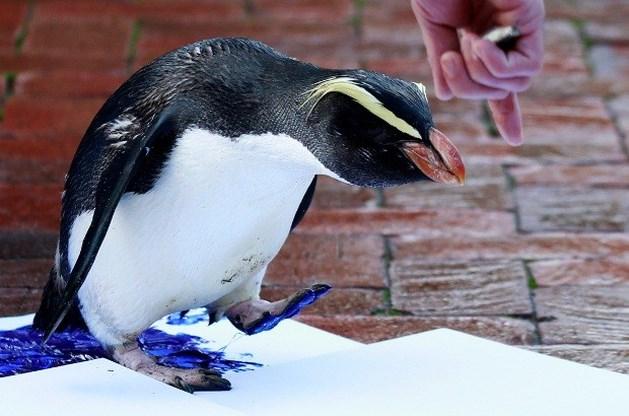 Zoodieren dompelen hun poten in de inkt