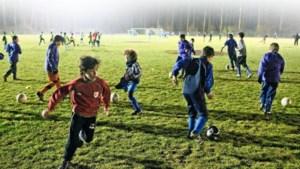 Limburg heeft meeste sportclubs