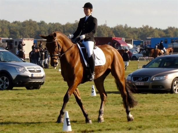 Liesbet Janssen nationaal kampioen met paard Estrea van't Amaryllishof