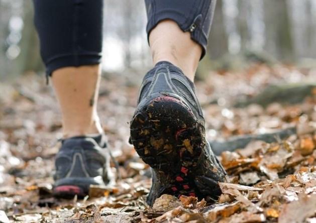 Lichaamsbeweging niet gevaarlijk voor kankerpatiënten