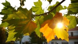 Droog en rustig herfstweer
