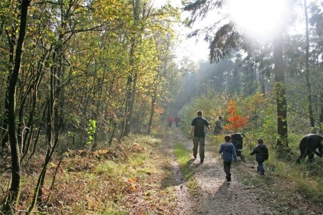 Nieuw beheerplan voor park Heesakkerheide