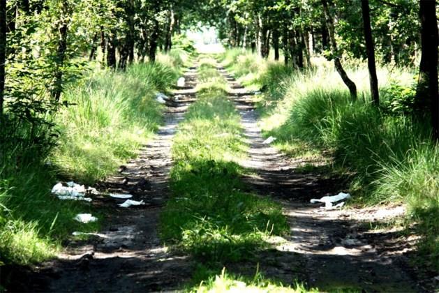 Dertien kilometers verharde boswegen