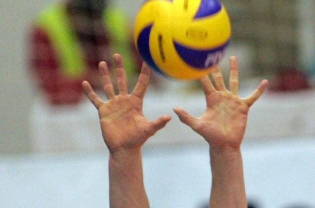 Volley: Belgen eindigen ongeslagen op EK-kwalificatietoernooi