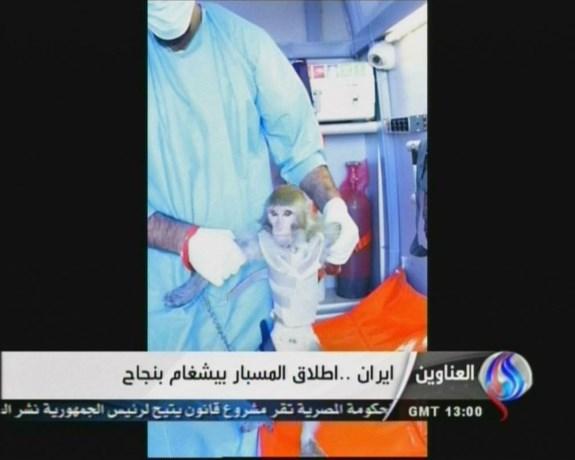 Iran stuurt aapje ruimte in
