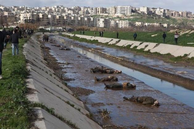 """""""Minstens 56 mannen geëxecuteerd in Aleppo"""""""