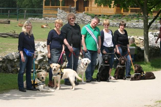 Assistentiehondenpups in opleiding zijn overal welkom