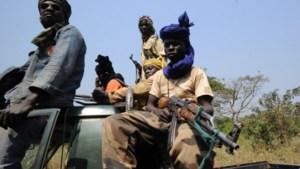 Rebellen nemen hoofdstad Centraal-Afrikaanse Republiek in