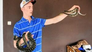 Vermiste python is terecht