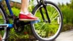 Laat de auto thuis en spring op de fiets