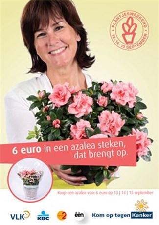 Voor zes euro bent u in de fleur van uw geven