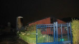 Dode bij boerderijbrand in Zwijndrecht