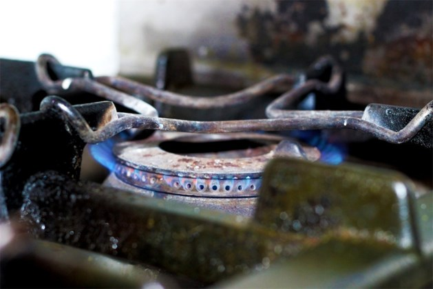 Limburgse koten bestand tegen brand