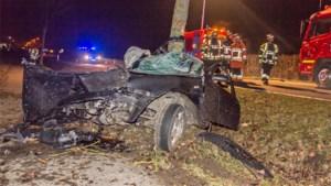 Bestuurder (23) overleeft crash tegen boom niet