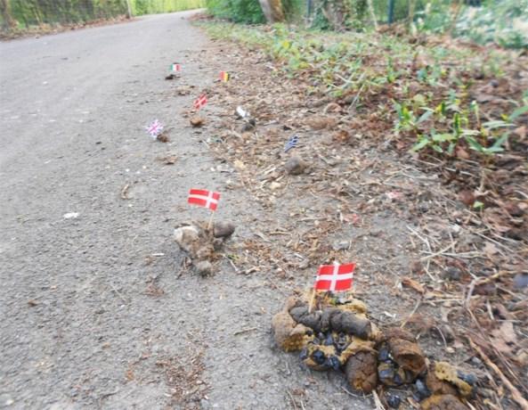 Hondsdrollen hijsen de vlag