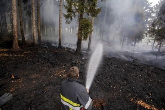 Burgemeester vermoedt kwaad opzet bij bosbrand in Voeren